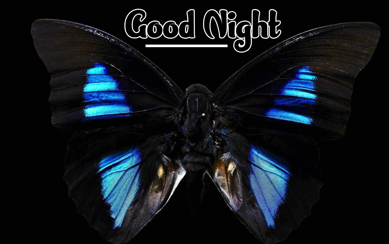 Cute Babies Good Night ImagesPics hd for Whatsapp
