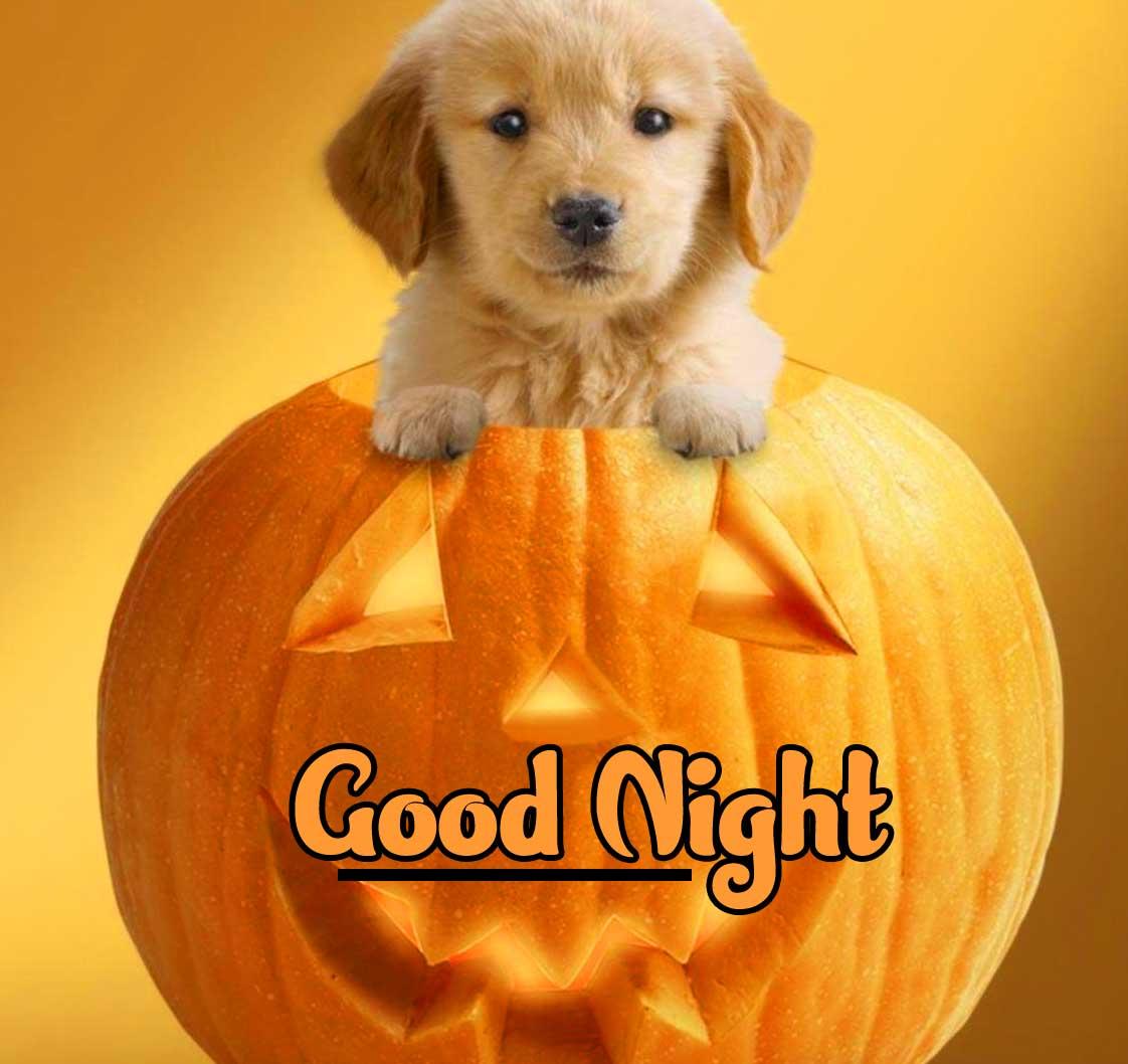 Best Quality Full HD Cute Babies Good Night ImagesPics Download