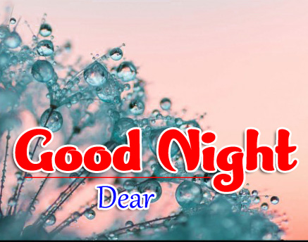 Good Night Whatsapp DP Profile Images Wallpaper pics Download