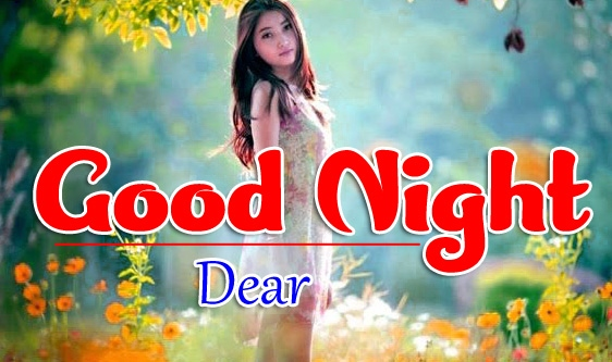 Good Night Whatsapp DP Profile Images Pics Wallpaper Free Download