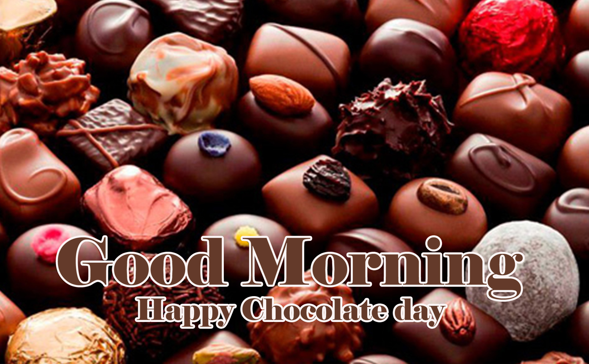 Happy Chocolate Day Good Morning Images Wallpaper free Download Free