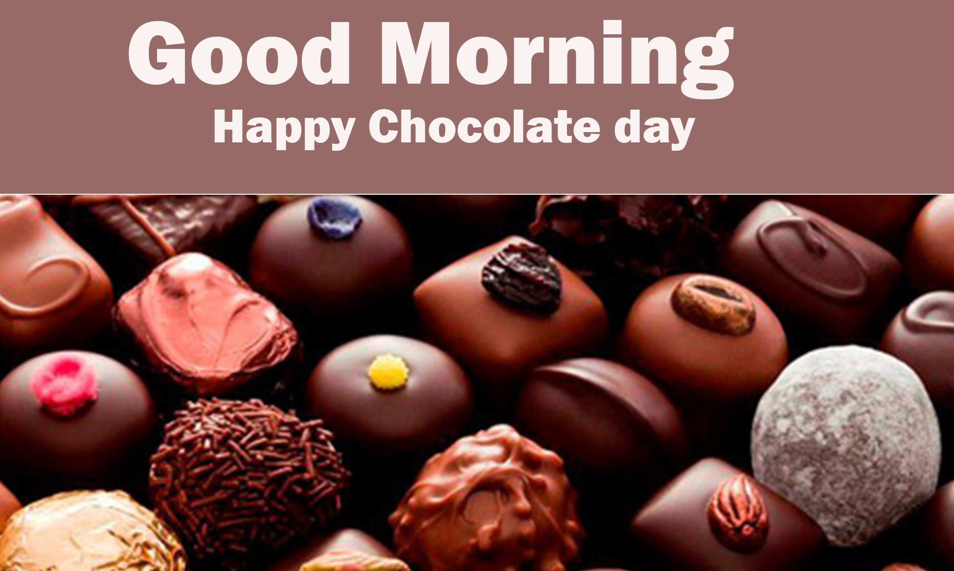 Chocolate Day Good Morning Pics free Dow load