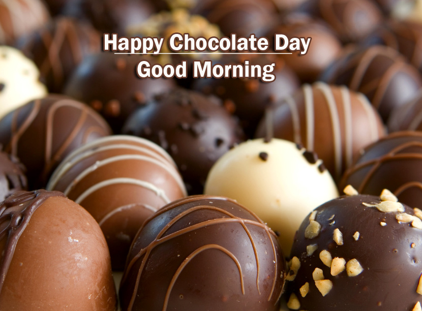 Chocolate Day Good Morning Wallpaper Latest Download Free