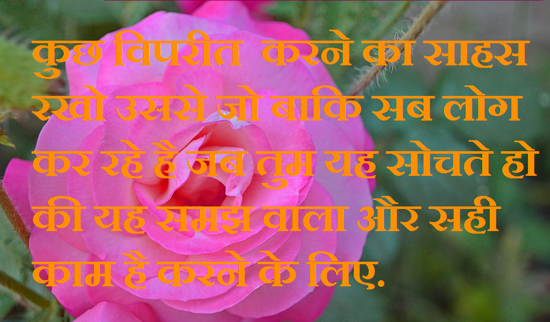 Hindi Good Thought Whatsapp DP Images Pics Wallpaper With Flower