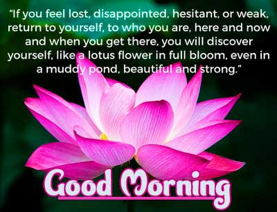 Quotes Good Morning Images Collation 2021