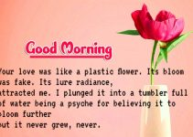 Hindi Quotes Good Morning Images Download 97