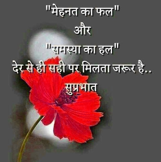 Hindi Quotes Whatsapp DP Images Download 51
