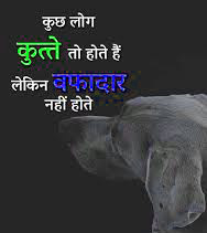 Hindi Shayari WhatsApp DP HD Download 40