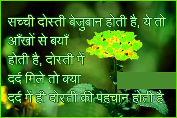 Hindi Shayari WhatsApp DP HD Download 70