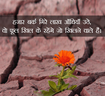 Hindi Status Whatsap DP Images Download 44