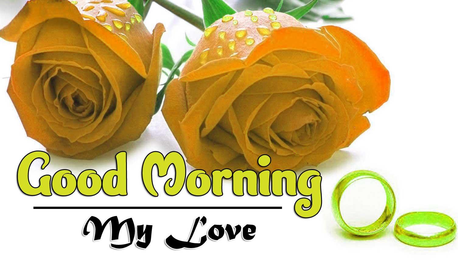 Latest Free Good Morning Photo Download Free