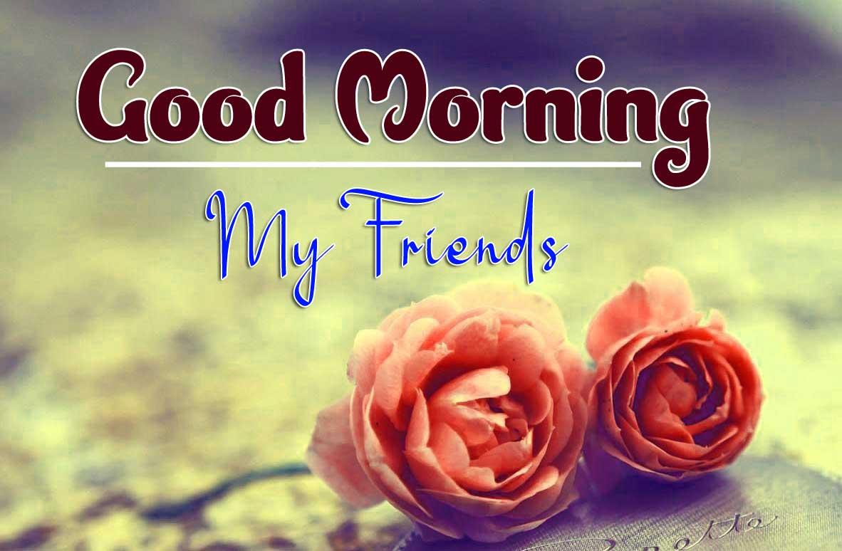 Rose Free Good Morning Pics Download