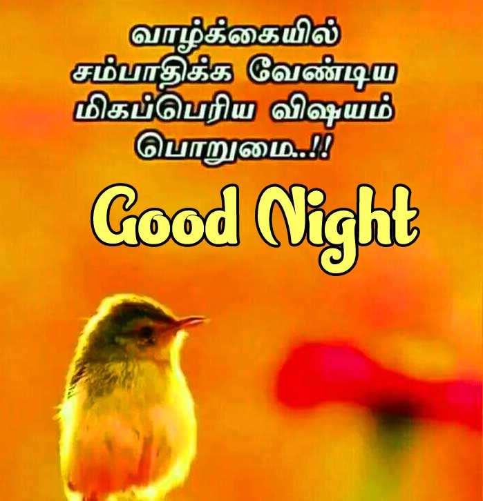 Tamil Good Night Wishes Images Pics Download Latest Free