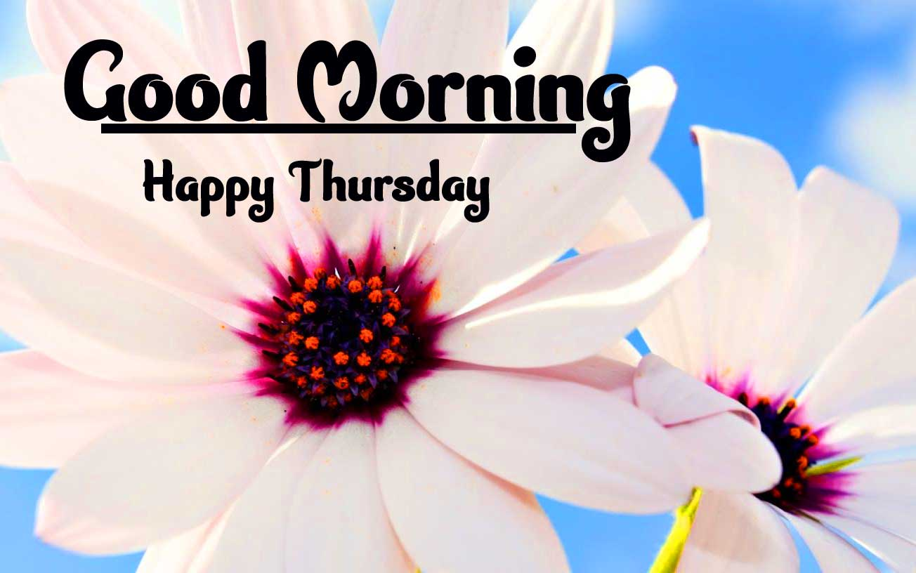 Thursday Good Morning Images Pics Wallpaper Free Download
