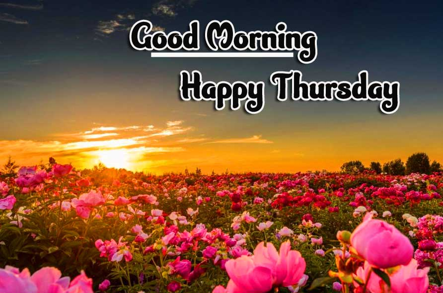 Thursday Good Morning Images Photo Pics Download