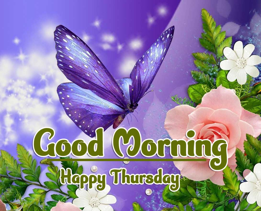 Best Free Thursday Good Morning Images Pics Wallpaper Download