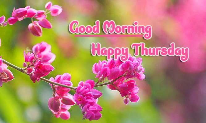 Thursday Good Morning Images Pics photo Download Free