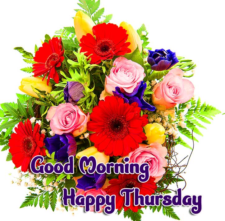 Thursday Good Morning Images Pics Download for Whatsapp