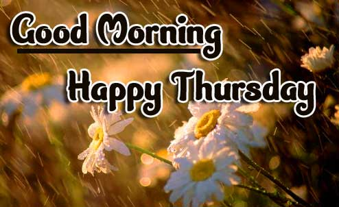 Beautiful Thursday Good Morning Images Pics HD Download Free