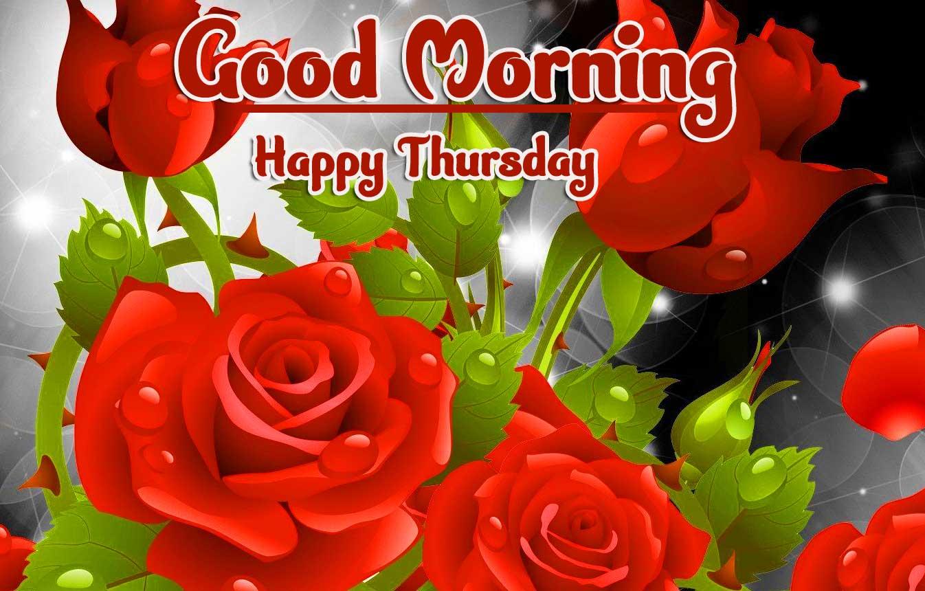 Rose Thursday Good Morning Images pics Wallpaper Download