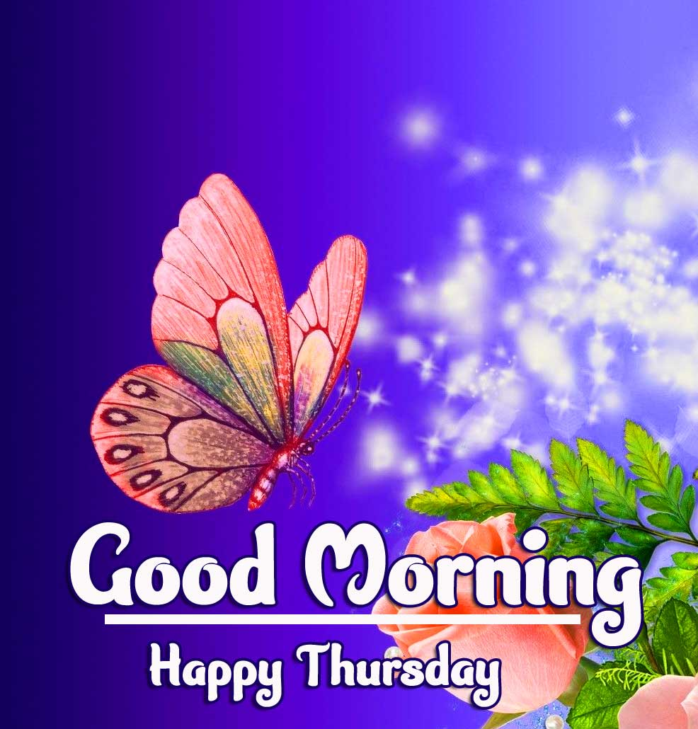 Latest Free Beautiful Thursday Good Morning Images Pics Download