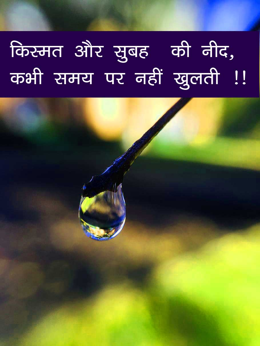 Hindi Shayari Unique Whatsapp DP Profile Images Pics Download