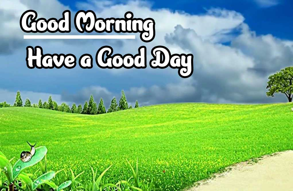 Good Morning Images 4K 1080p Pics Free Latest Download