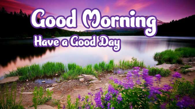 Latest Nature Free Good Morning Images 4K 1080p Pics Download