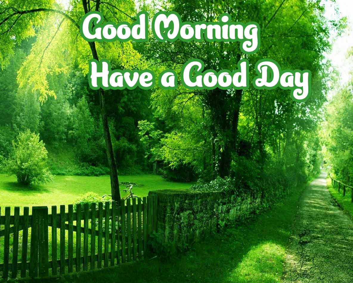 Nature Free Good Morning Wishes Images 4K 1080p Photo Download