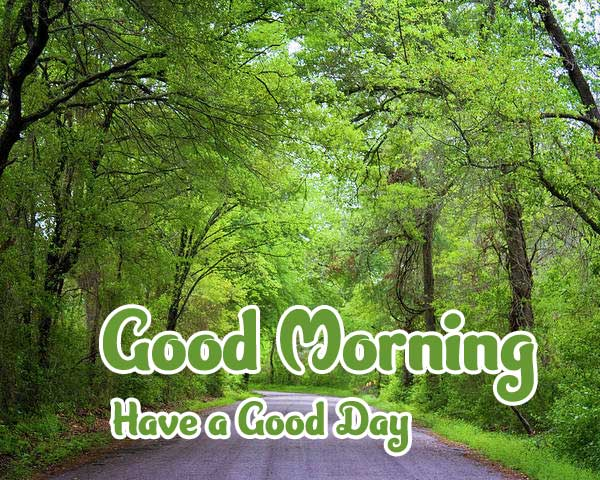 Good Morning Wishes Images 4K 1080p Photo Free Download