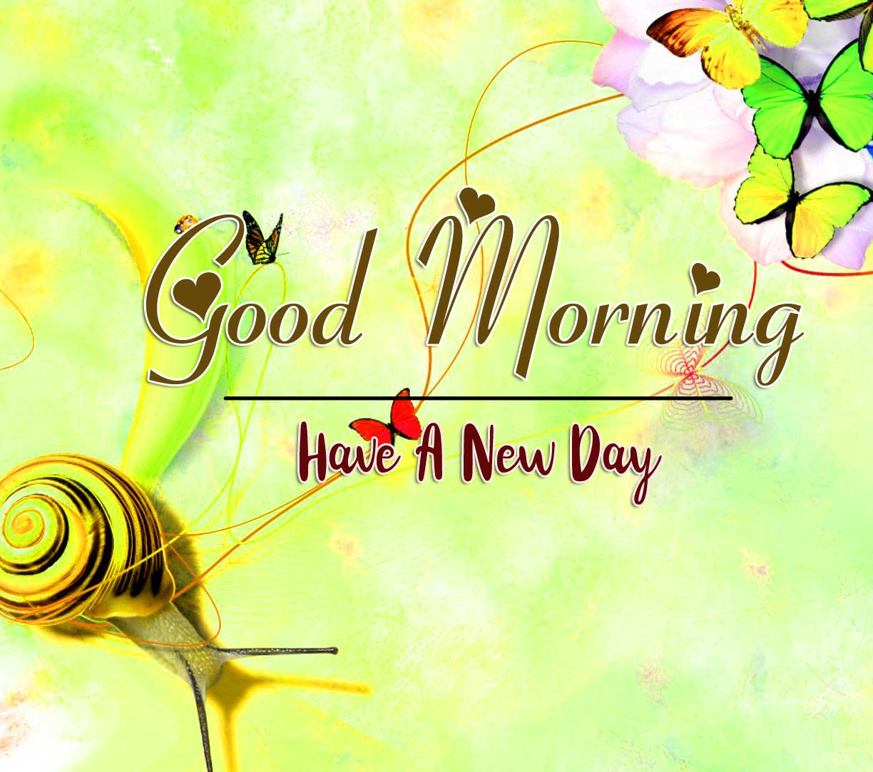Latest Free good morning wishes to wife Pics pictures Download