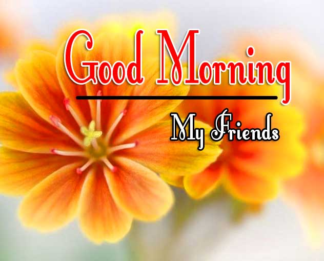 good morning wishes to wife Pics Wallpaper Free Download