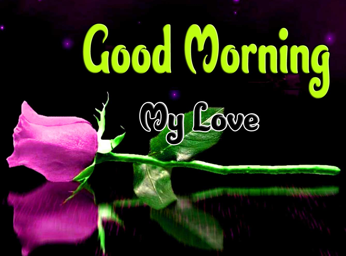 good morning wishes to wife Images Wallpaper With Rose