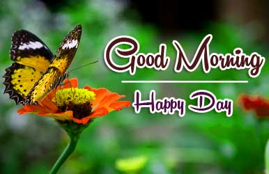 good morning wishes to wife Wallpaper Pics Download