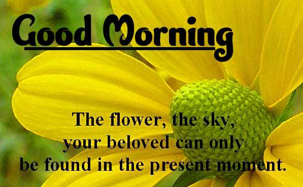 English Thought Good Morning Images photo Free Download