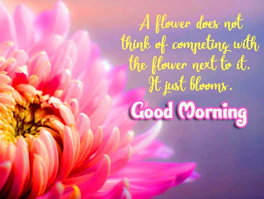 English Thought Good Morning Images Wallpaper Downward
