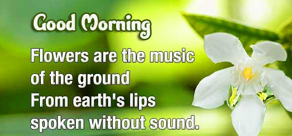 English Thought Good Morning Images Pics For Facebook Status