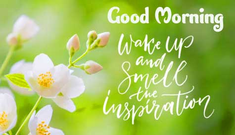 English Thought Good Morning Images pictures Wallpaper free Download