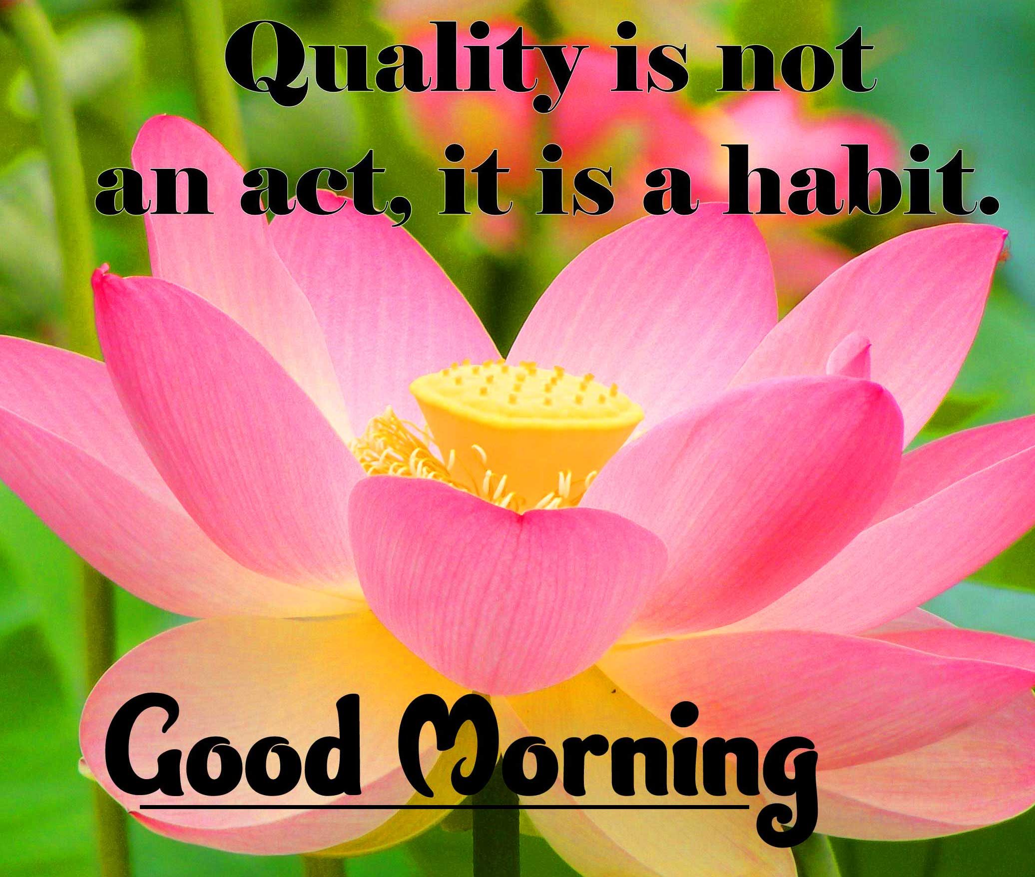 English Thought Good Morning Images Wallpaper Free Download