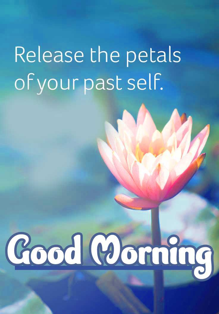 Updates English Thought Good Morning Images Pics Download