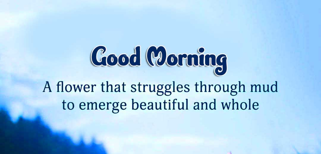 English Thought Good Morning Images Wallpaper pics Download Free