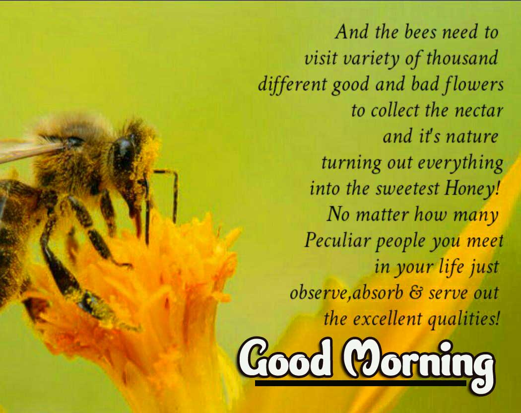 English Thought Good Morning Images Pics DOWNLOAD & Share