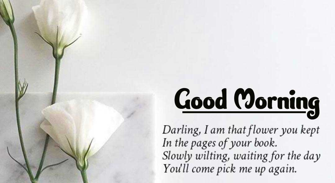 English Thought Good Morning Images Pics Download Free