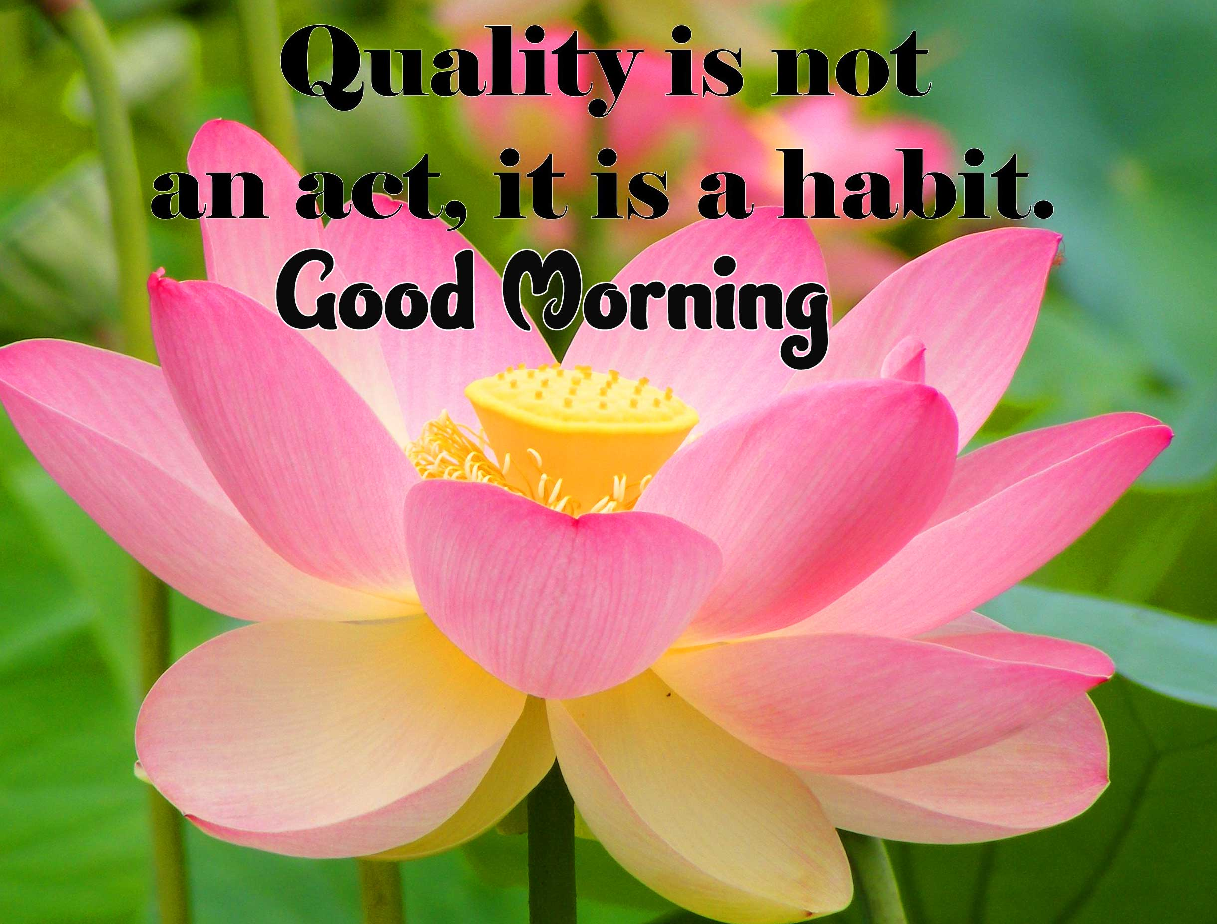 English Thought Good Morning Images Pics Free for Facebook