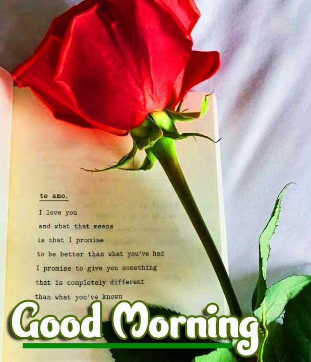 Good Morning Images with English Thought Pics pictures Download