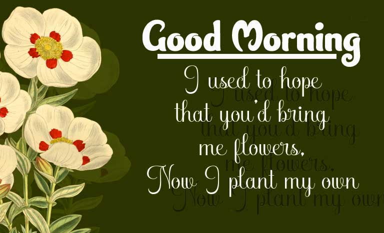 Good Morning Images with English Thought Pics Free for Facebook / Whatsapp