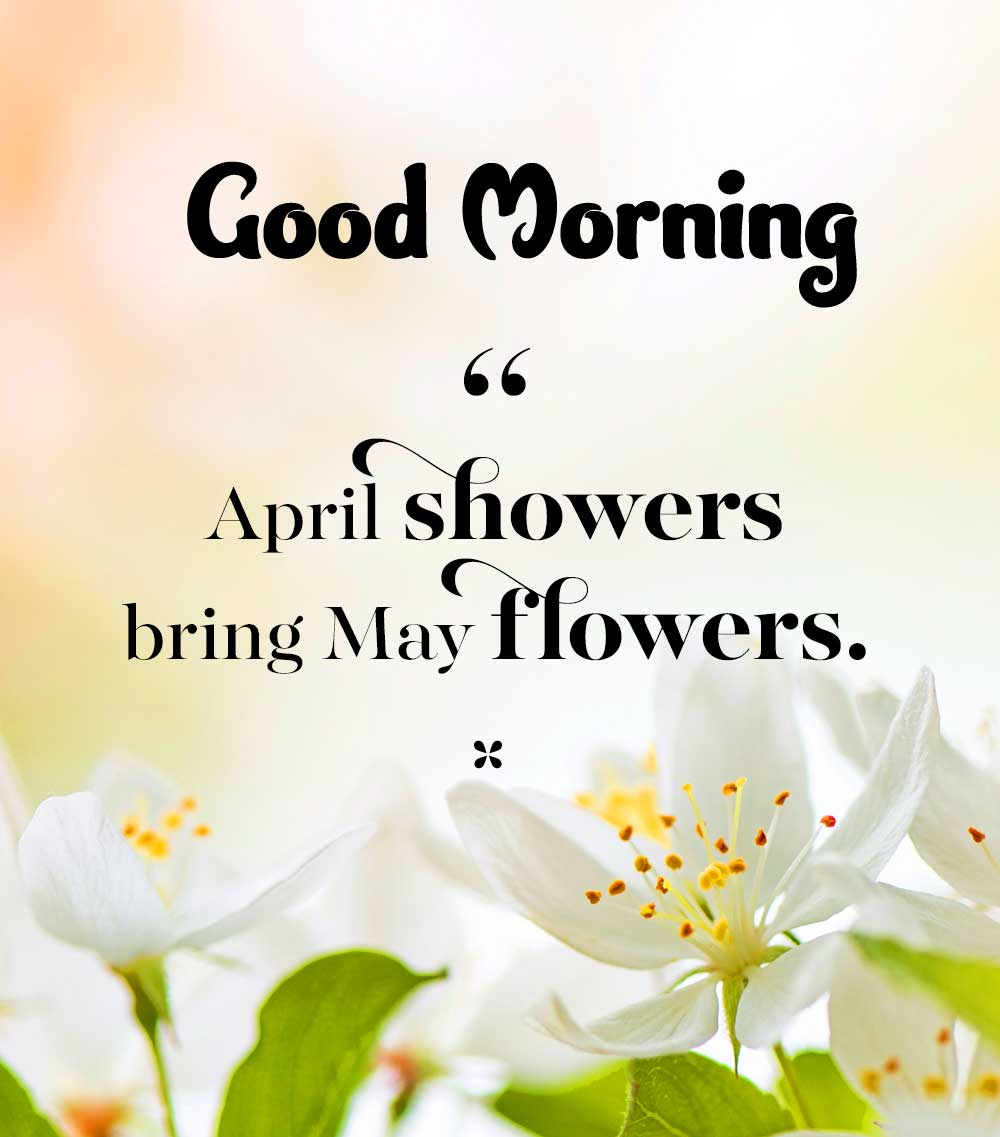 Good Morning Images with English Thought pics Wallpaper Download