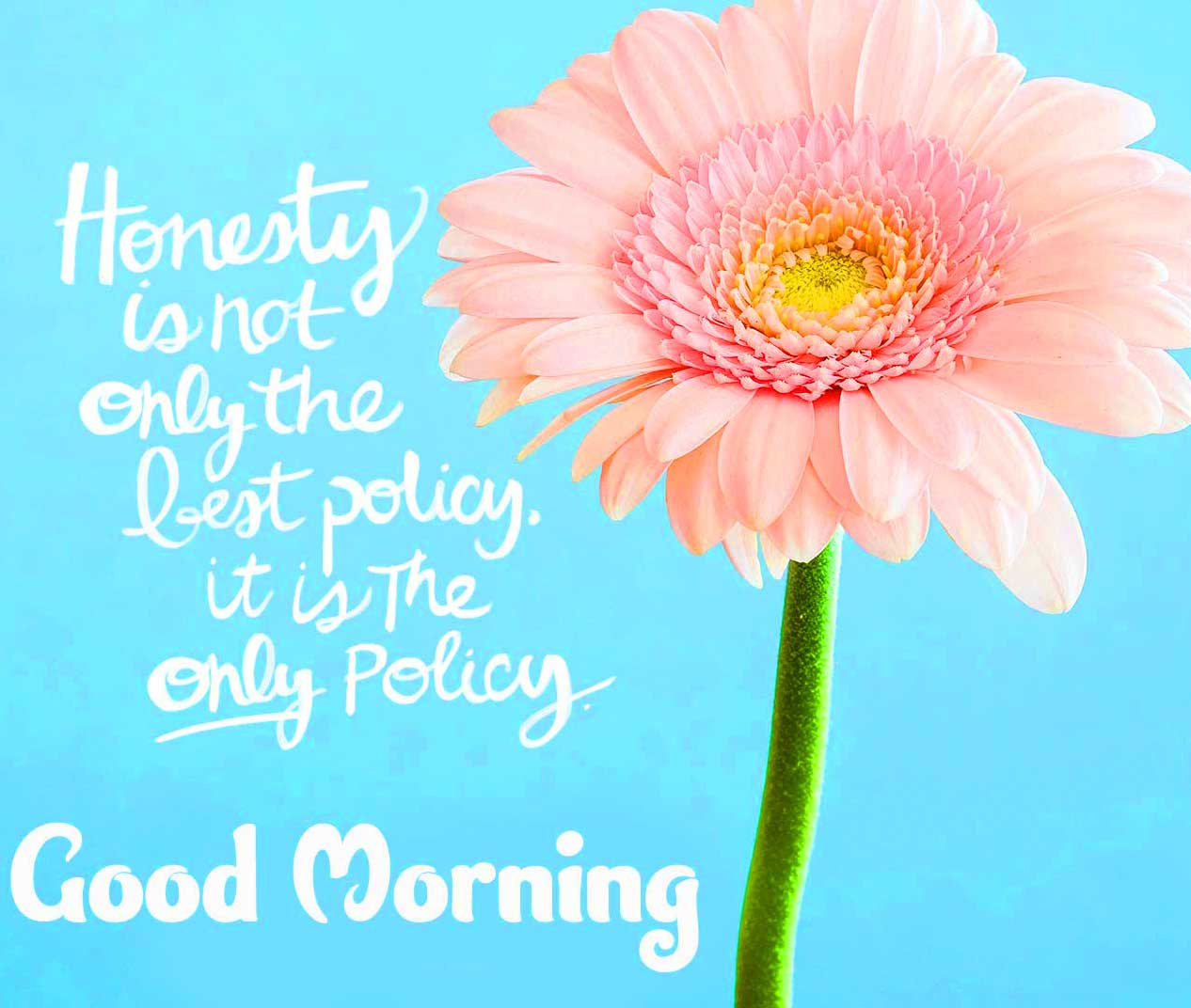 English Thought Good Morning Images Wallpaper for Friend