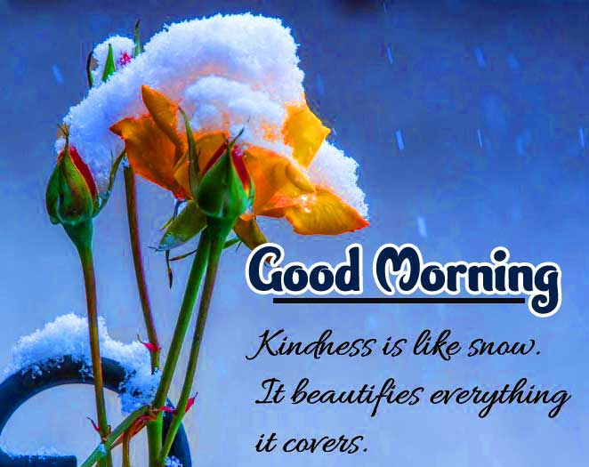 Good Morning Images with English Thought Photo Download Free
