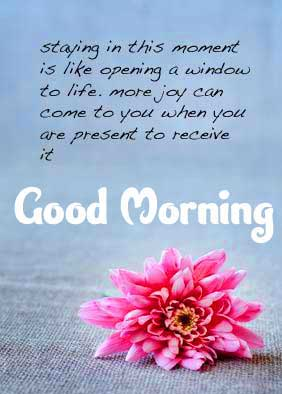 Full HD Free Good Morning Images with English Thought Pics Download